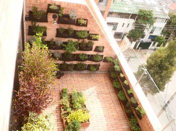 Diseño de Jardines interiores Bogota y Colombia