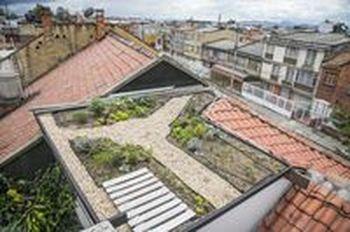 Paisajismo Medellín y Cali