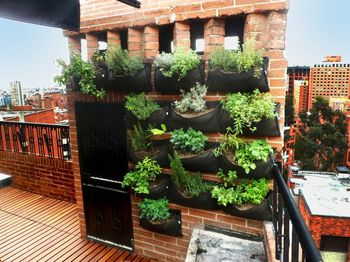 Decoracion de Jardines Bogota y Colombia y Medellin