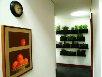 Diseño de Jardines Bogota y Colombia