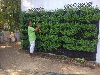 Jardines Exteriores en Bogota y Colombia