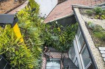Diseño de jardines exteriores bogota y colombia y medellin y Cali