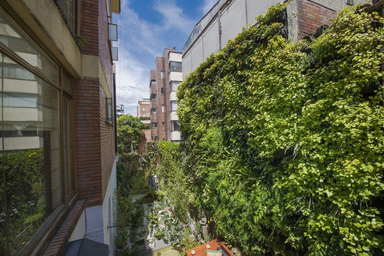 Muros Verdes Verticales con la mejor calidad. Muros Verdes al alcance de todos