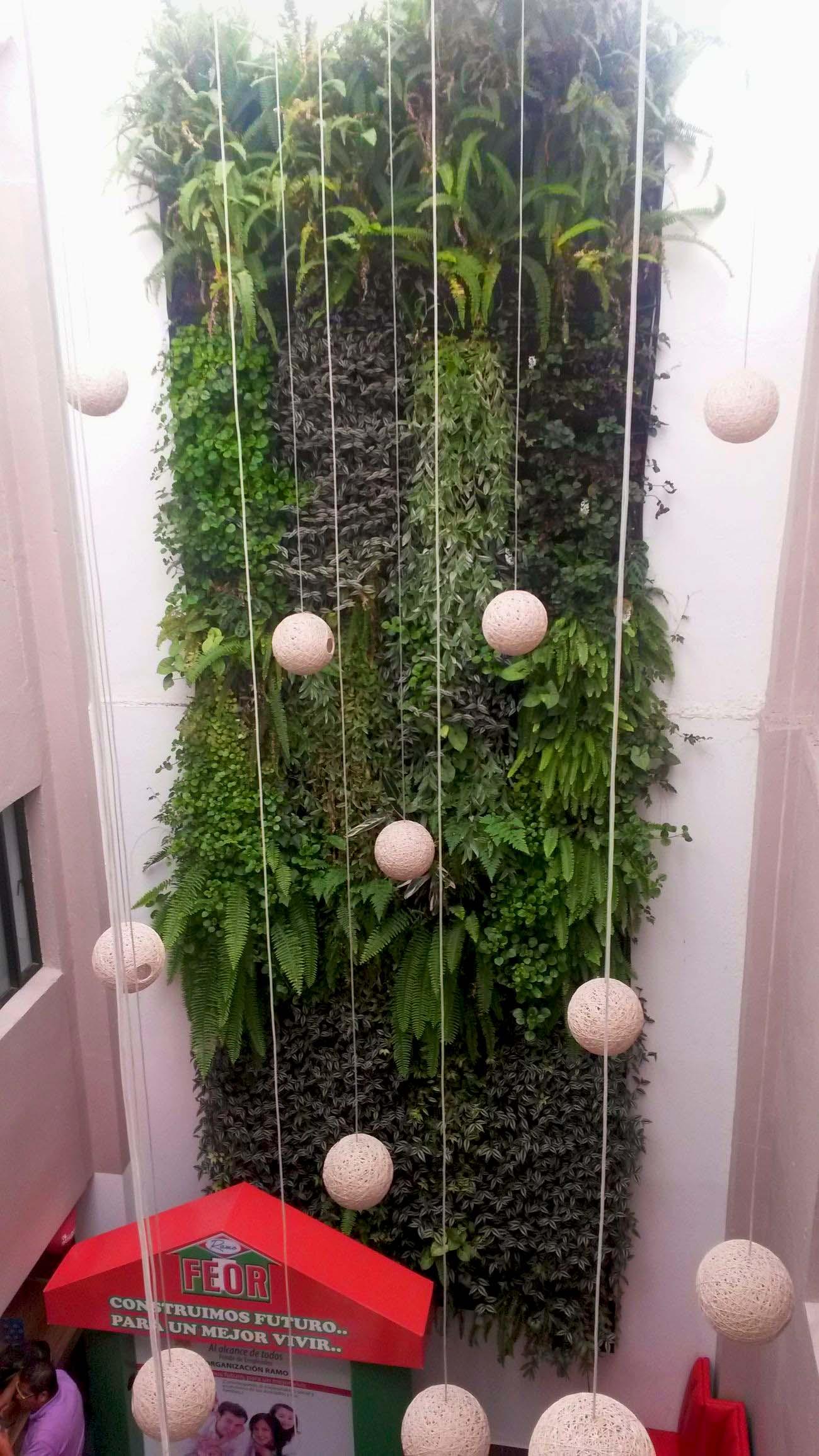jardin interior colombia jardines verticales caseros