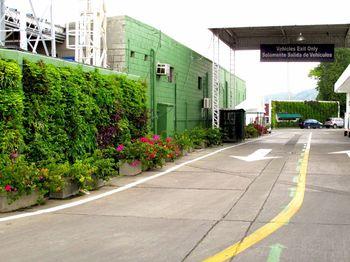 Muros Verdes y Jardines Colgantes Medellin y Bogota