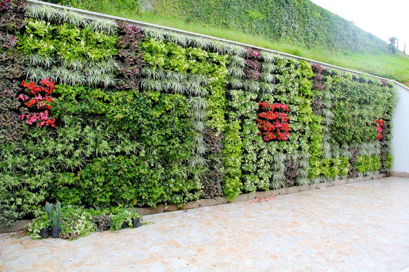 Jardines Verticales y Muros Vivos Bogota y Colombia