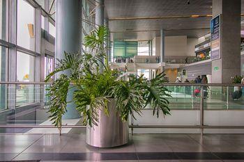 Huerta en Casa con Diseño de Jardín