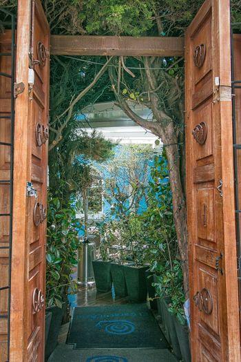 arquitectura ecologica en Bogota y Colombia
