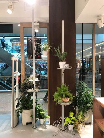 Diseño de jardines interiores y exteriores